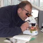 Peter neemt de zieke planten onder de loep