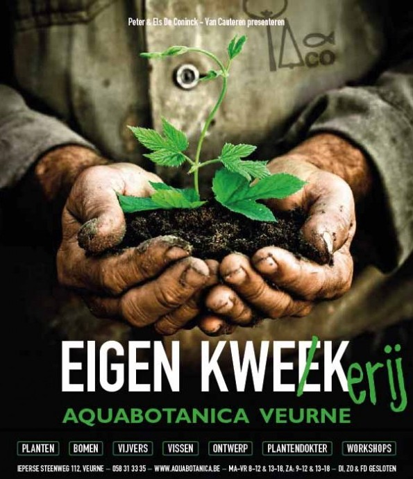 Aquabotanica: Kustplanten-Specialist